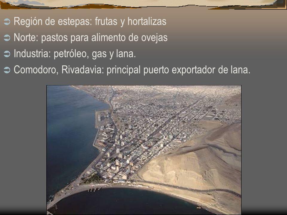Región de estepas: frutas y hortalizas Norte: pastos para alimento de ovejas Industria: petróleo, gas y lana. Comodoro, Rivadavia: principal puerto ex