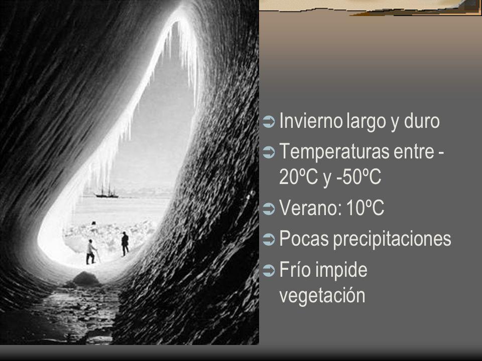Invierno largo y duro Temperaturas entre - 20ºC y -50ºC Verano: 10ºC Pocas precipitaciones Frío impide vegetación