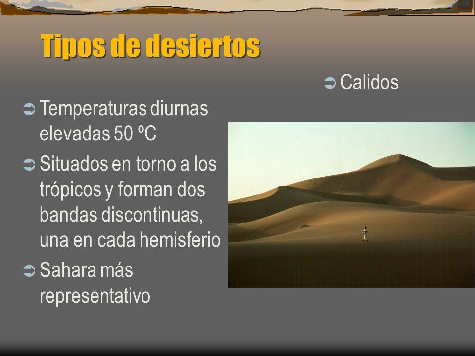 Tipos de desiertos Calidos Temperaturas diurnas elevadas 50 ºC Situados en torno a los trópicos y forman dos bandas discontinuas, una en cada hemisfer