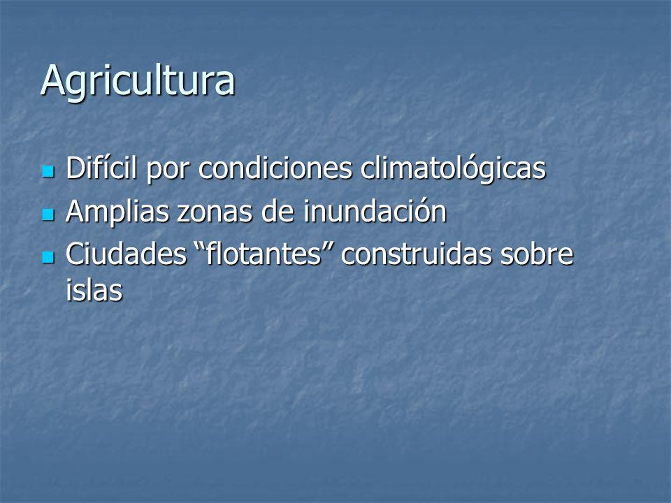 Agricultura Difícil por condiciones climatológicas Difícil por condiciones climatológicas Amplias zonas de inundación Amplias zonas de inundación Ciud