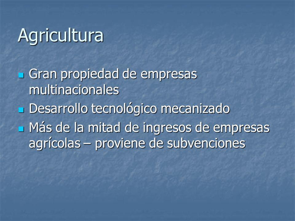 Agricultura Gran propiedad de empresas multinacionales Gran propiedad de empresas multinacionales Desarrollo tecnológico mecanizado Desarrollo tecnoló