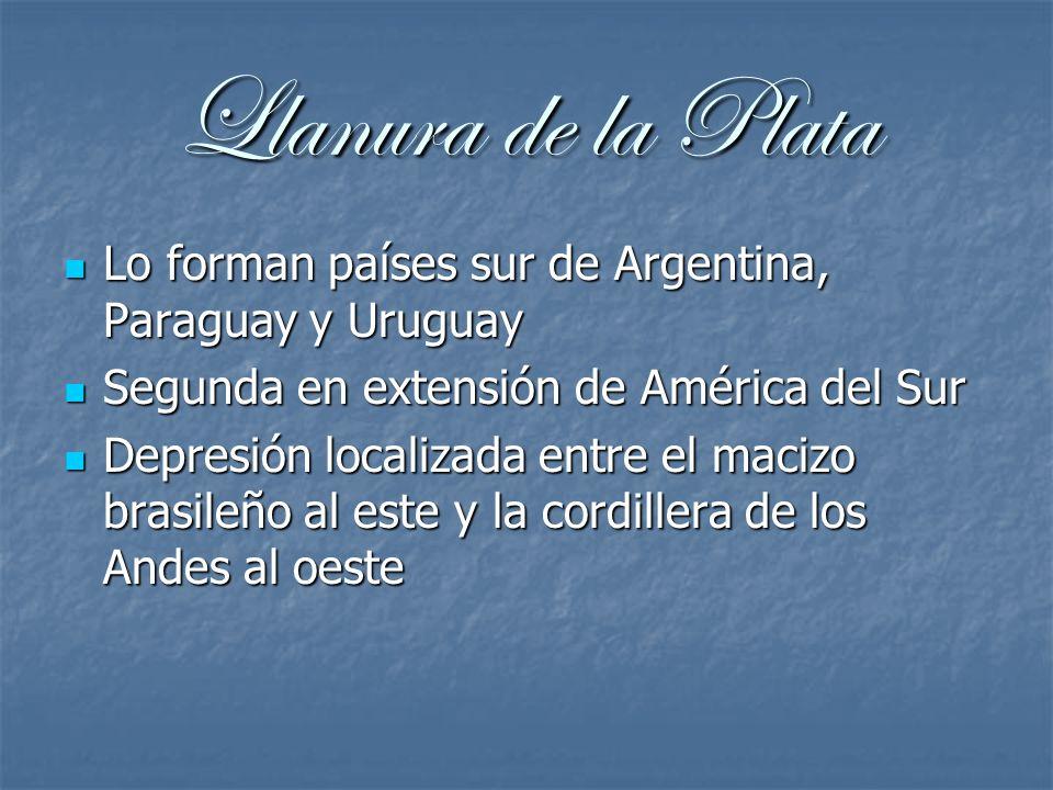 Llanura de la Plata Lo forman países sur de Argentina, Paraguay y Uruguay Lo forman países sur de Argentina, Paraguay y Uruguay Segunda en extensión d