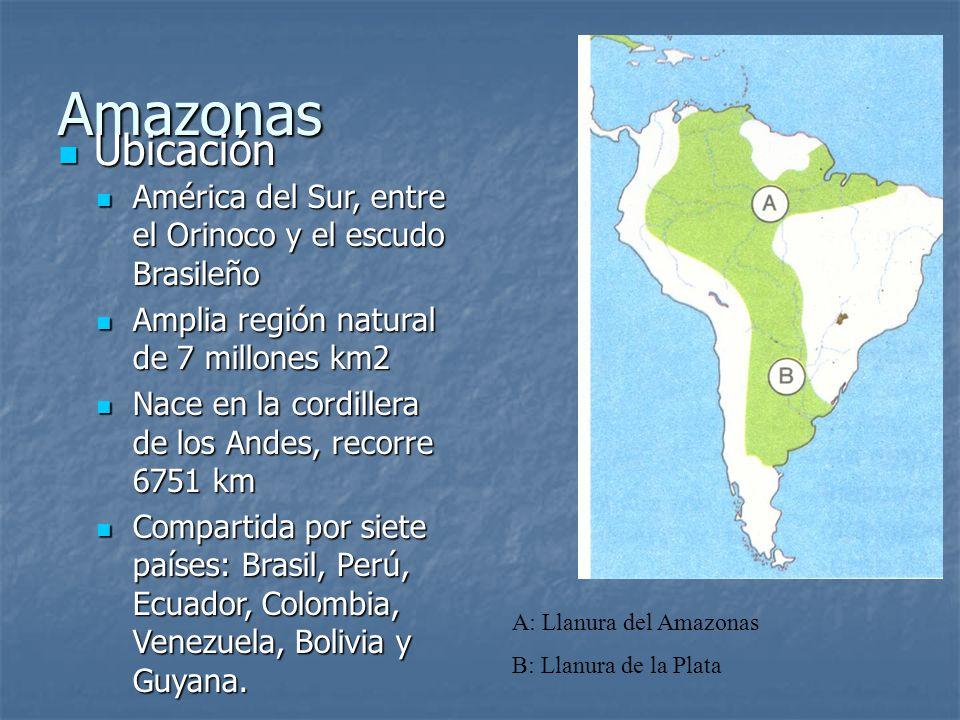 Amazonas Ubicación Ubicación América del Sur, entre el Orinoco y el escudo Brasileño América del Sur, entre el Orinoco y el escudo Brasileño Amplia re