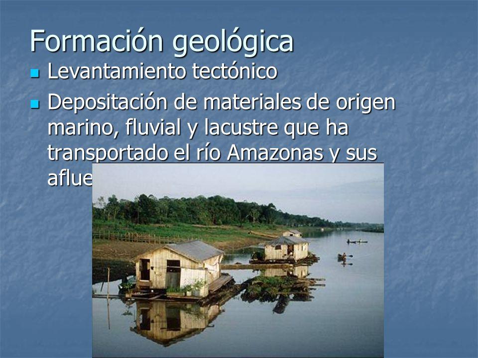Formación geológica Levantamiento tectónico Levantamiento tectónico Depositación de materiales de origen marino, fluvial y lacustre que ha transportad