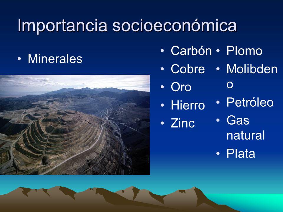 Importancia socioeconómica Minerales Carbón Cobre Oro Hierro Zinc Plomo Molibden o Petróleo Gas natural Plata