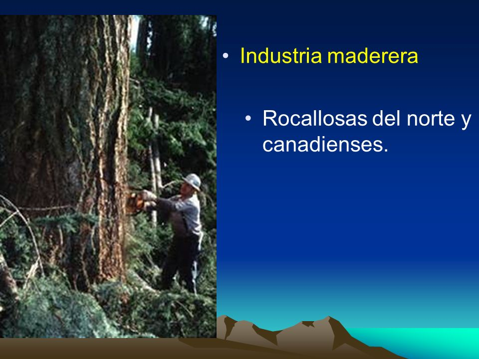 Industria maderera Rocallosas del norte y canadienses.