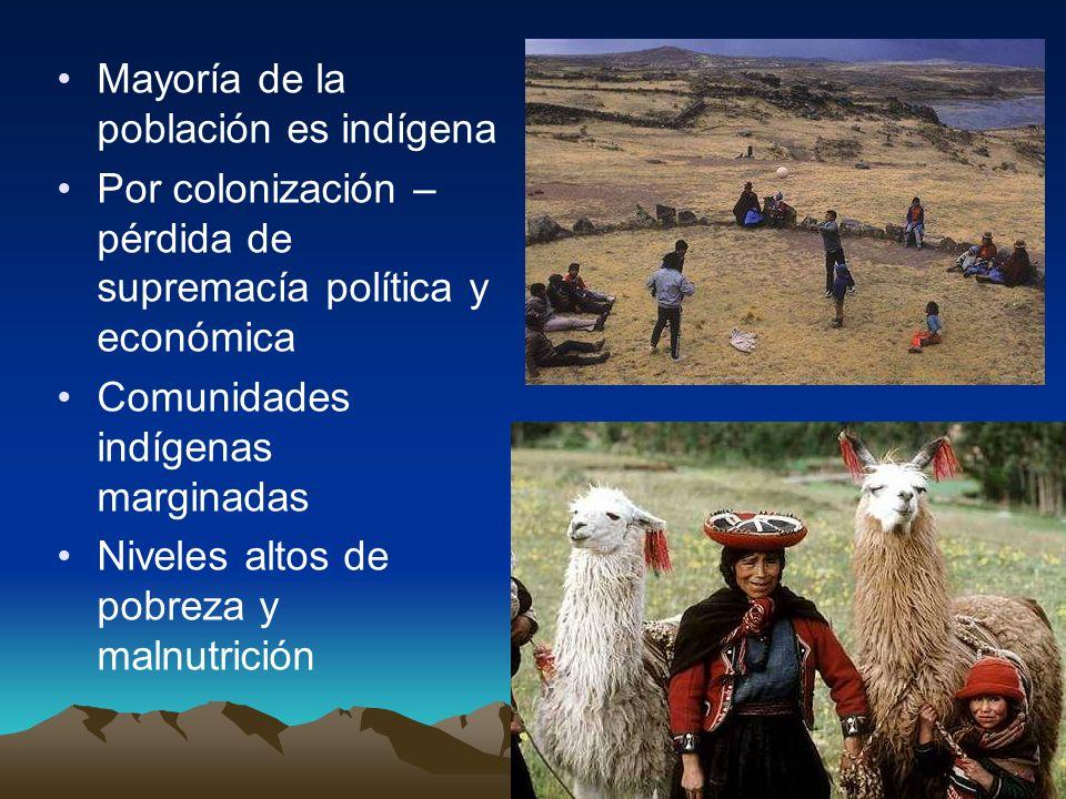Mayoría de la población es indígena Por colonización – pérdida de supremacía política y económica Comunidades indígenas marginadas Niveles altos de po