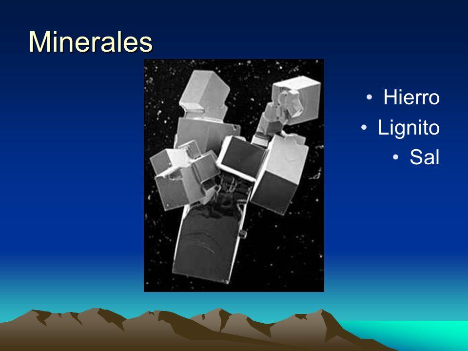 Minerales Hierro Lignito Sal