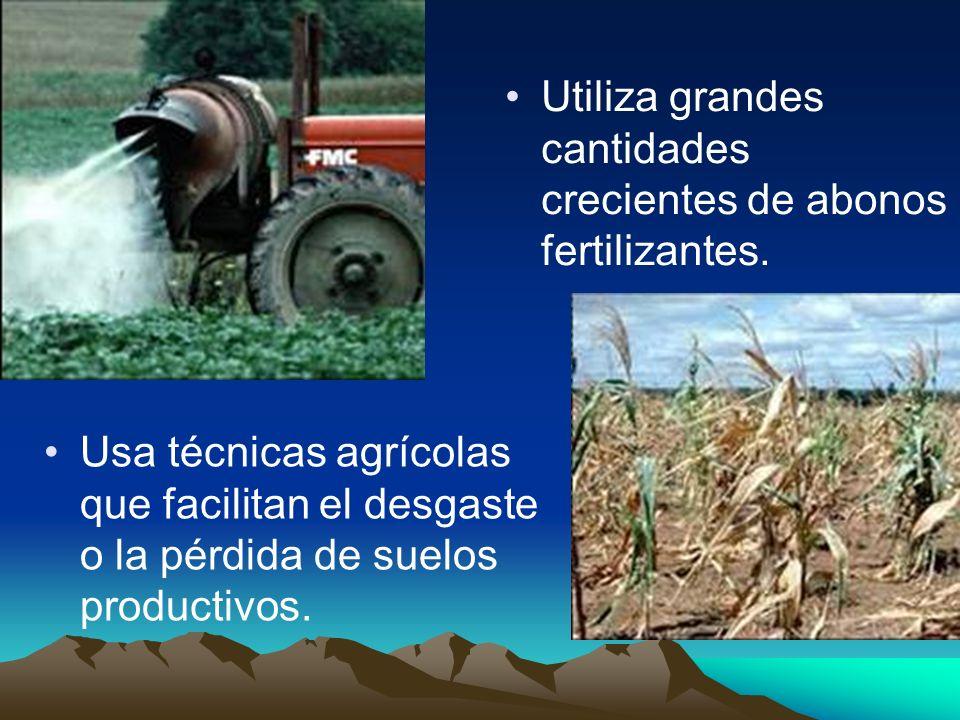 Usa técnicas agrícolas que facilitan el desgaste o la pérdida de suelos productivos. Utiliza grandes cantidades crecientes de abonos fertilizantes.
