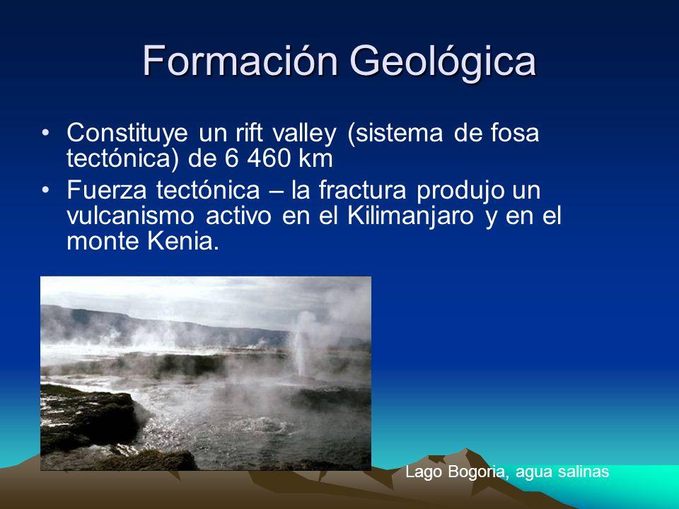 Formación Geológica Constituye un rift valley (sistema de fosa tectónica) de 6 460 km Fuerza tectónica – la fractura produjo un vulcanismo activo en e