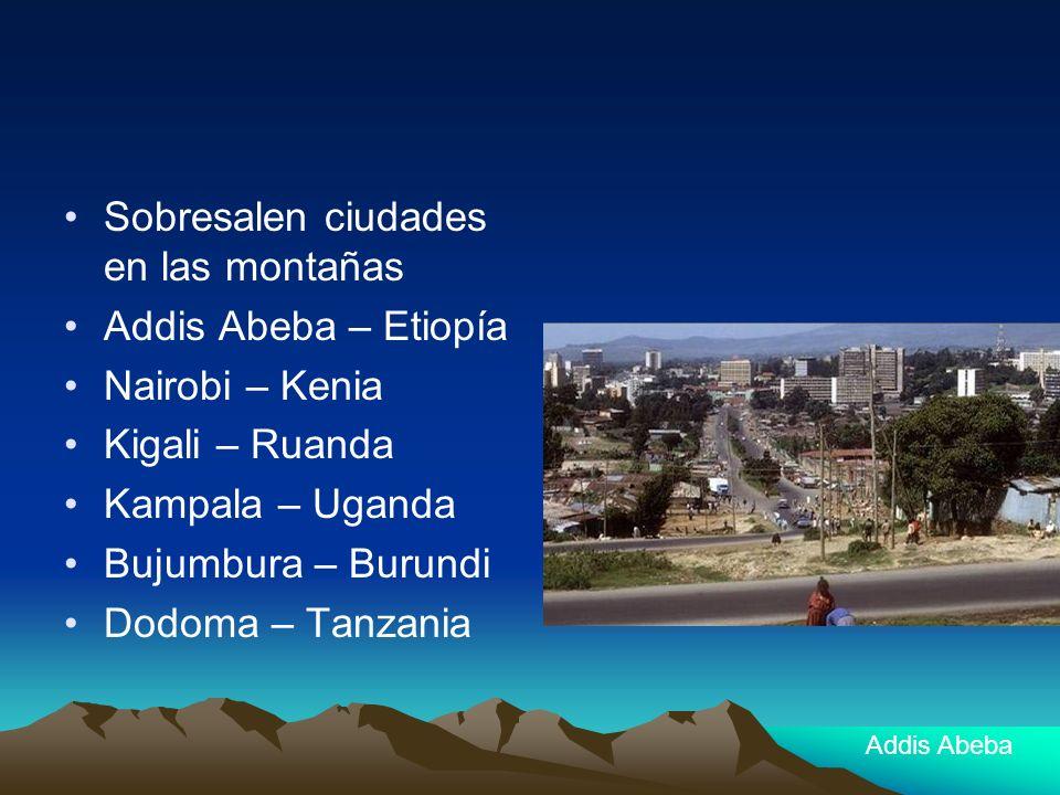 Sobresalen ciudades en las montañas Addis Abeba – Etiopía Nairobi – Kenia Kigali – Ruanda Kampala – Uganda Bujumbura – Burundi Dodoma – Tanzania Addis