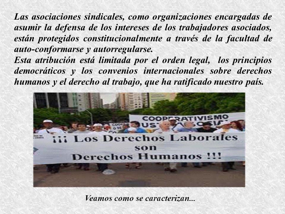 Las asociaciones sindicales, como organizaciones encargadas de asumir la defensa de los intereses de los trabajadores asociados, están protegidos cons