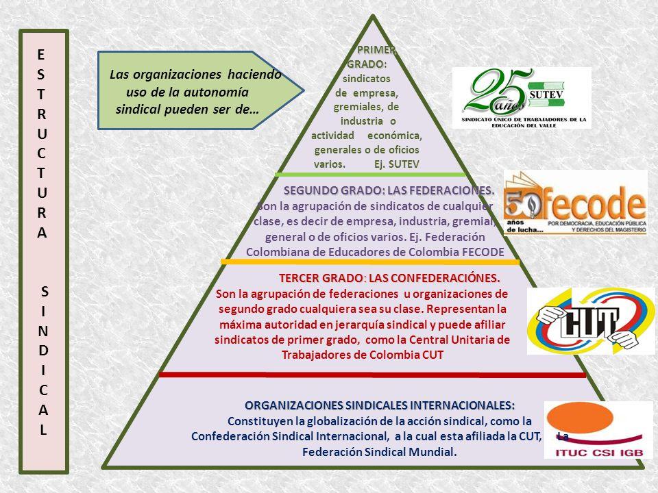 E S T R U C T U R A S I N D I C A L Las organizaciones haciendo uso de la autonomía sindical pueden ser de… PRIMER GRADO PRIMER GRADO: sindicatos de e