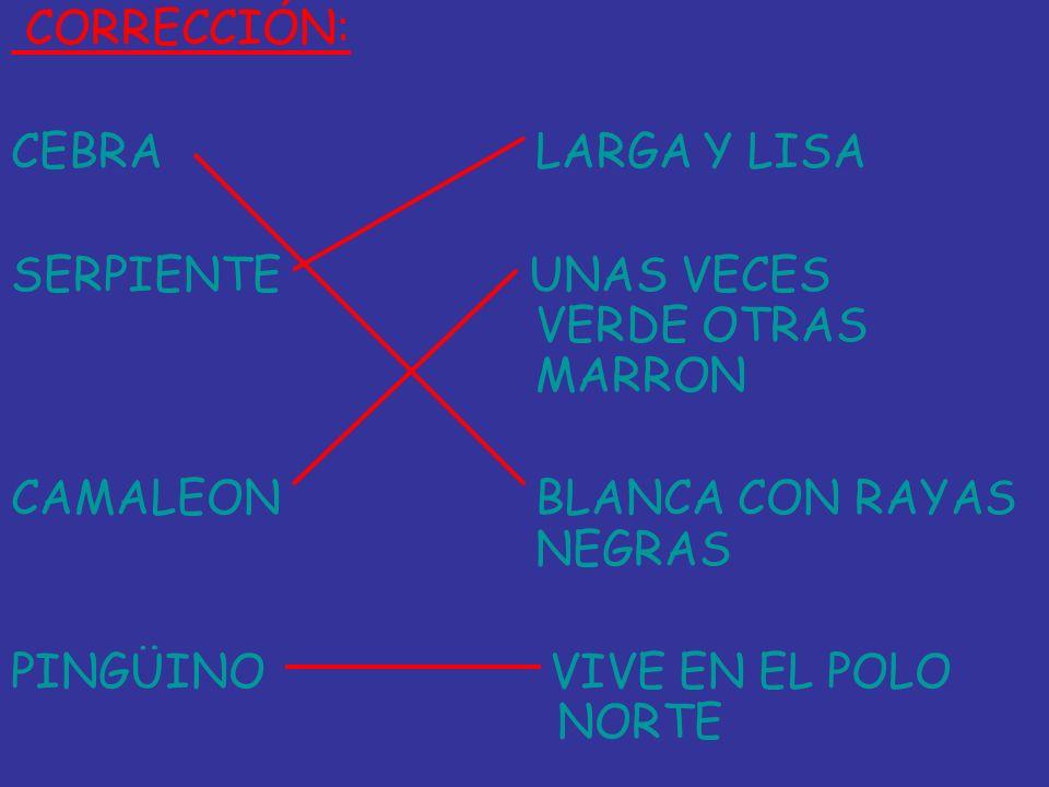 CORRECCIÓN: CEBRALARGA Y LISA SERPIENTE UNAS VECES VERDE OTRAS MARRON CAMALEONBLANCA CON RAYAS NEGRAS PINGÜINO VIVE EN EL POLO NORTE