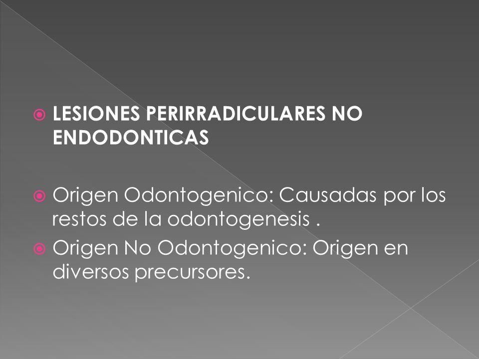 LESIONES PERIRRADICULARES NO ENDODONTICAS Origen Odontogenico: Causadas por los restos de la odontogenesis. Origen No Odontogenico: Origen en diversos
