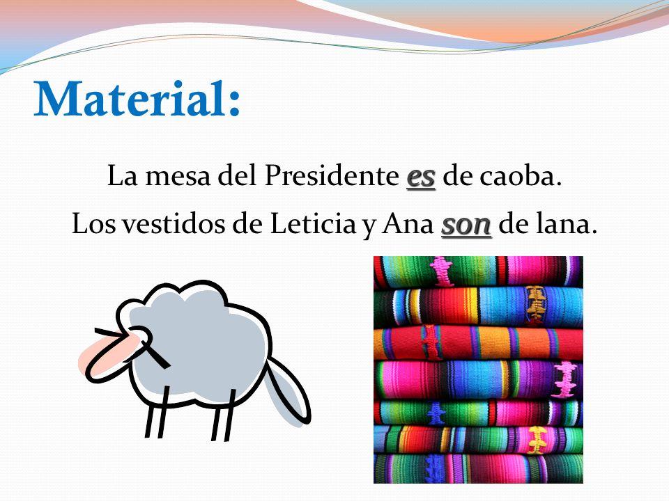 Propiedad: es El bolígrafo es de María. es La bolsa es de Cecilia. ¿Puedes identificar las diferencias principales entre los verbos ser y estar?