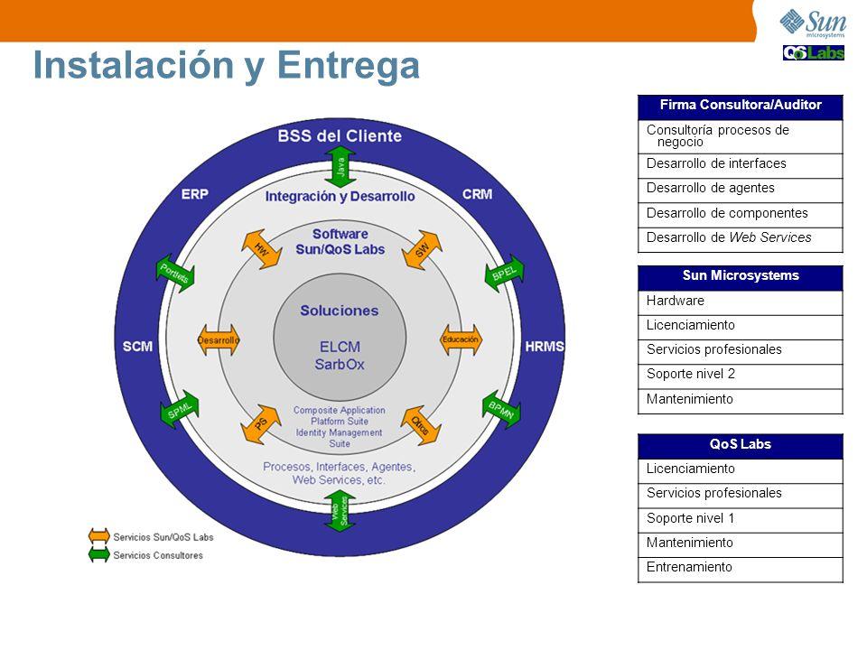 Instalación y Entrega Firma Consultora/Auditor Consultoría procesos de negocio Desarrollo de interfaces Desarrollo de agentes Desarrollo de componente
