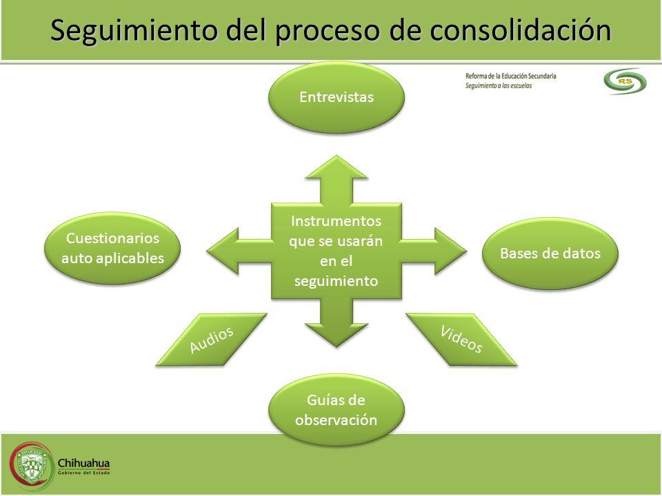 Seguimiento del proceso de consolidación Instrumentos que se usarán en el seguimiento Instrumentos que se usarán en el seguimiento Entrevistas Bases d