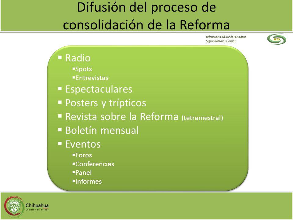 Radio Spots Entrevistas Espectaculares Posters y trípticos Revista sobre la Reforma (tetramestral) Boletín mensual Eventos Foros Conferencias Panel In