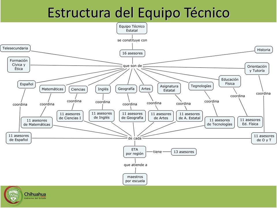 Estructura del Equipo Técnico