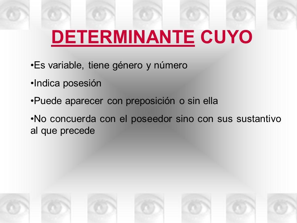 DETERMINANTE CUYO Es variable, tiene género y número Indica posesión Puede aparecer con preposición o sin ella No concuerda con el poseedor sino con s