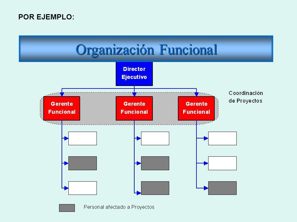 Organización Funcional POR EJEMPLO: