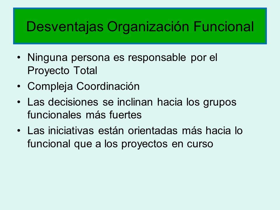 Ninguna persona es responsable por el Proyecto Total Compleja Coordinación Las decisiones se inclinan hacia los grupos funcionales más fuertes Las ini