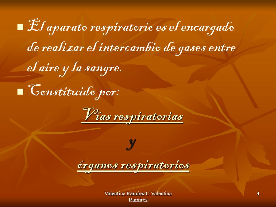 Valentina Ramírez15