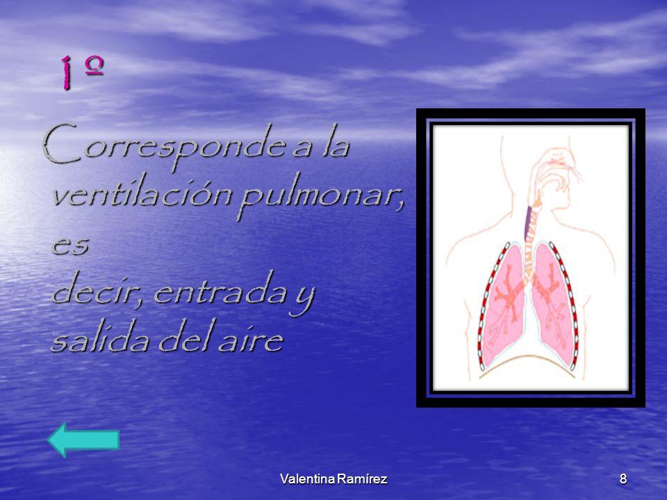 2º Hace referencia al intercambio gaseoso que ocurre en los pulmones, entre el aire que proviene del exterior y los gases que llegan a los pulmones acarreados por la sangre.