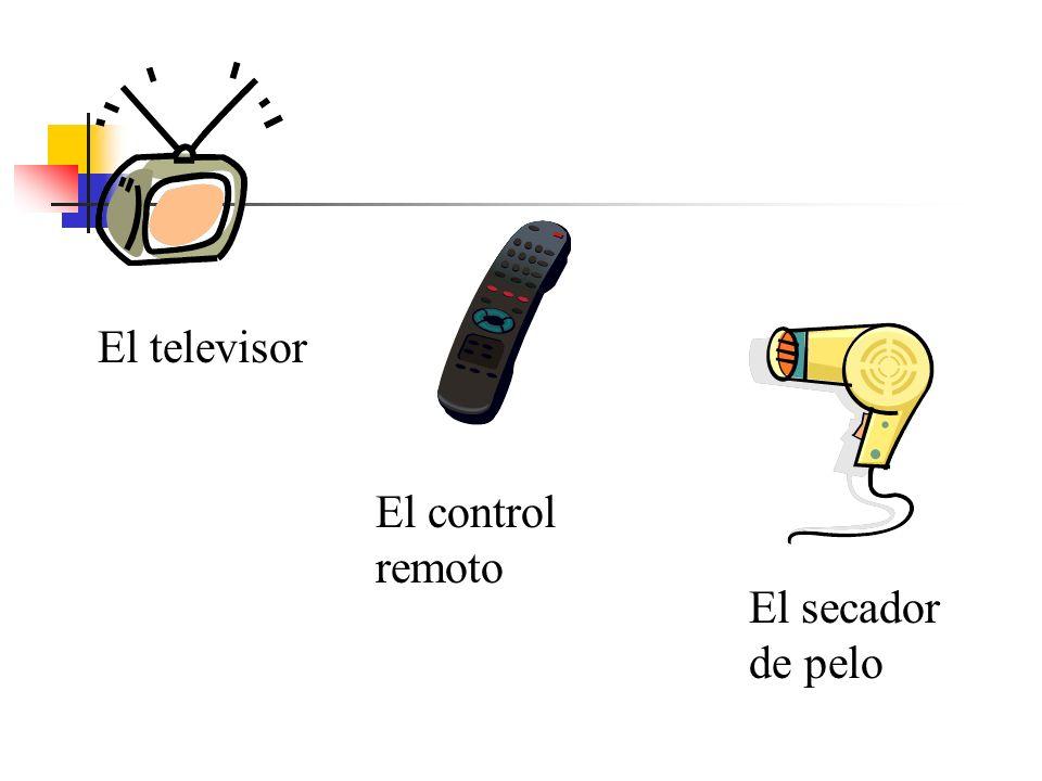 El televisor El secador de pelo El control remoto