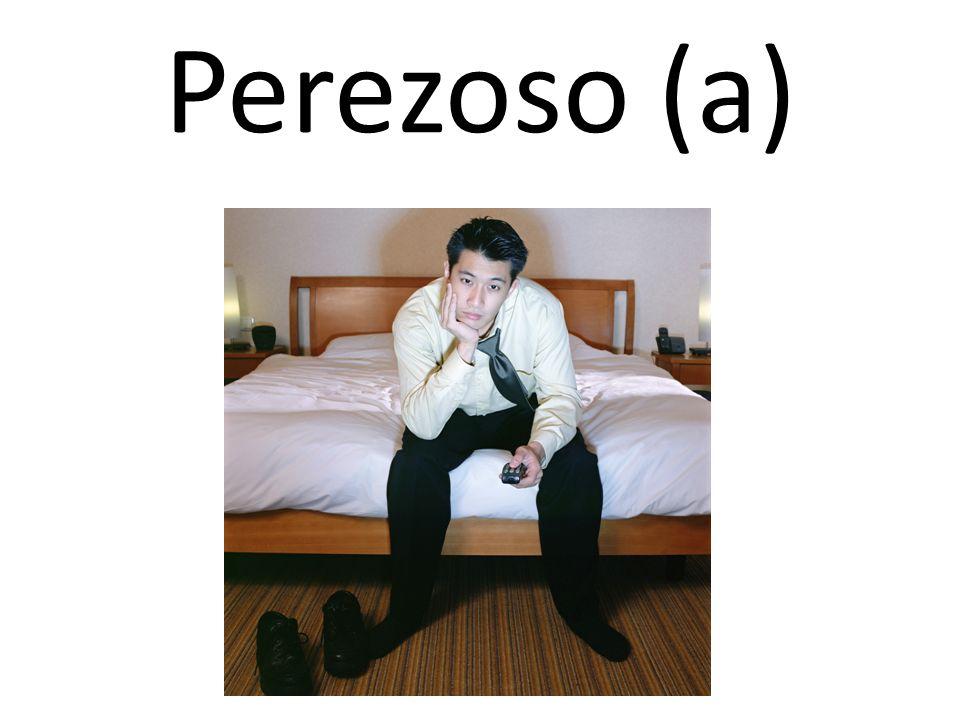 Perezoso (a)