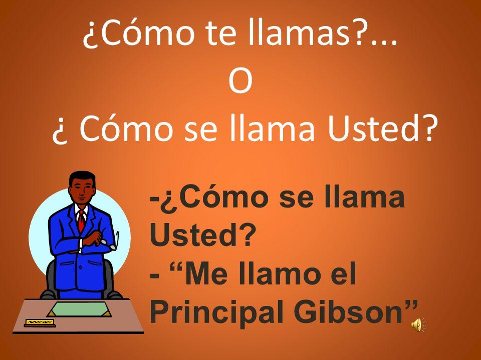 ¿Cómo te llamas?... O ¿ Cómo se llama Usted? -¿Cómo se llama Usted? - Me llamo el Principal Gibson