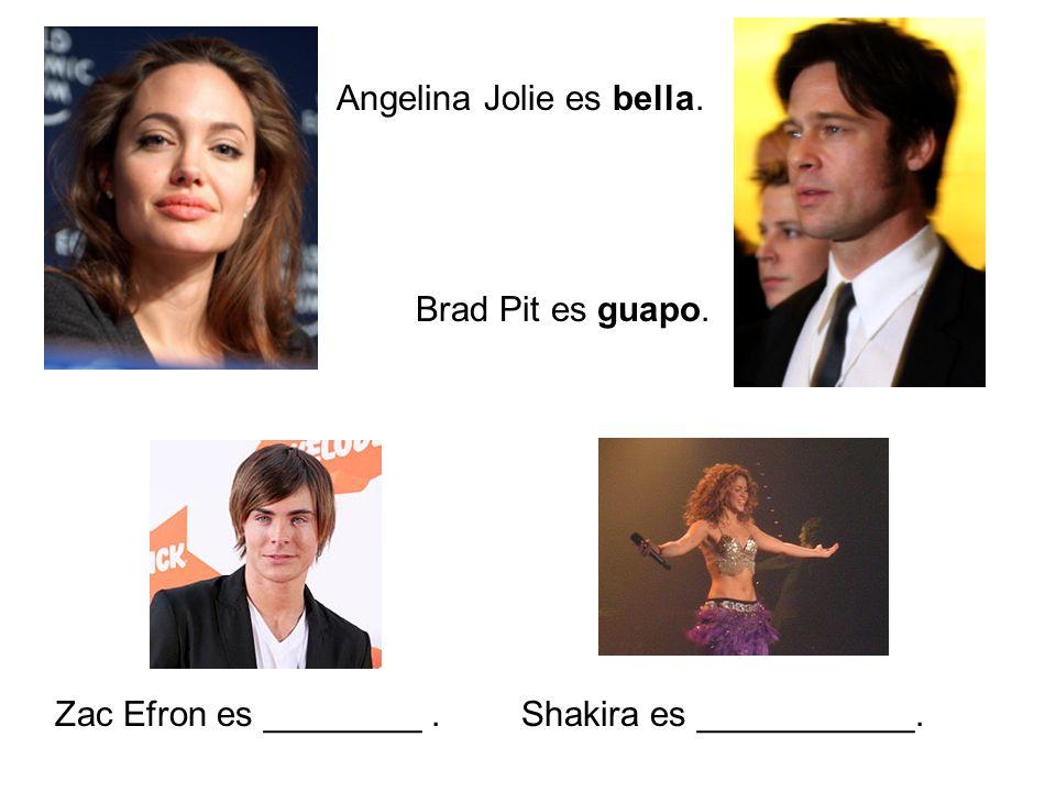 Angelina Jolie es bella. Brad Pit es guapo. Zac Efron es ________.Shakira es ___________.