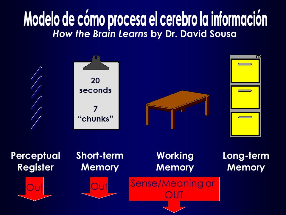 Long-term Memory Working Memory Sense/Meaning or OUT Short-term Memory Out Perceptual Register Out How the Brain Learns by Dr.