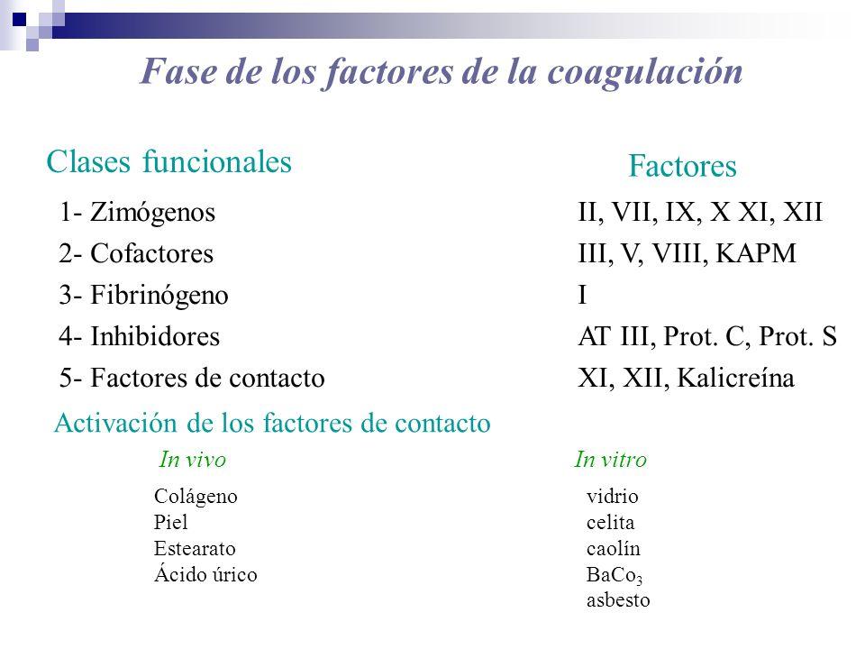 Clases funcionales Factores 1- ZimógenosII, VII, IX, X XI, XII 2- CofactoresIII, V, VIII, KAPM 3- FibrinógenoI 4- InhibidoresAT III, Prot. C, Prot. S
