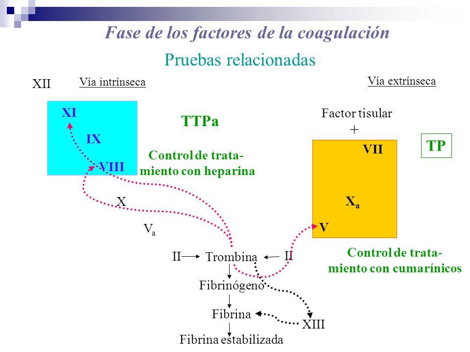 Fase de los factores de la coagulación Pruebas relacionadas X VIII IX XI XII VII II VaVa XaXa V Trombina Fibrinógeno Fibrina Fibrina estabilizada Fact