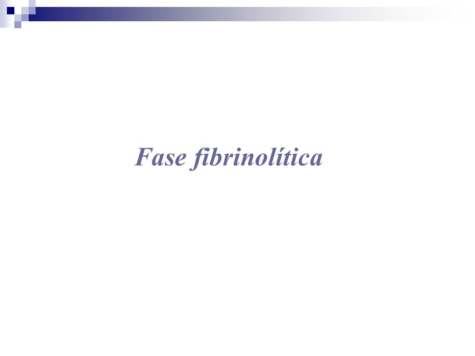 Fase fibrinolítica