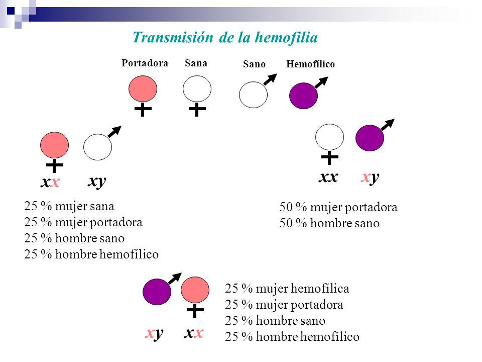 PortadoraSana SanoHemofílico xxxyxy 25 % mujer sana 25 % mujer portadora 25 % hombre sano 25 % hombre hemofílico 50 % mujer portadora 50 % hombre sano