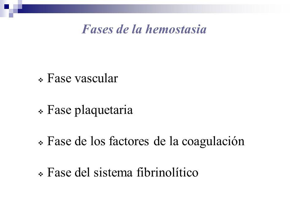 Fase vascular Aportes del endotelio al subendotelio: Colágeno Membrana basal Microfibrillas Mucopolisacáridos Elastinas y fibronectinas Aportes del endotelio a la sangre: Prostaciclina Factor tisular ( Factor III ) Factor von Willebrand ( FvW ) Antitrombina (AT) Trombomodulina Activador tisular del plasminógeno( tPA) Óxido nítrico y endotelinas.