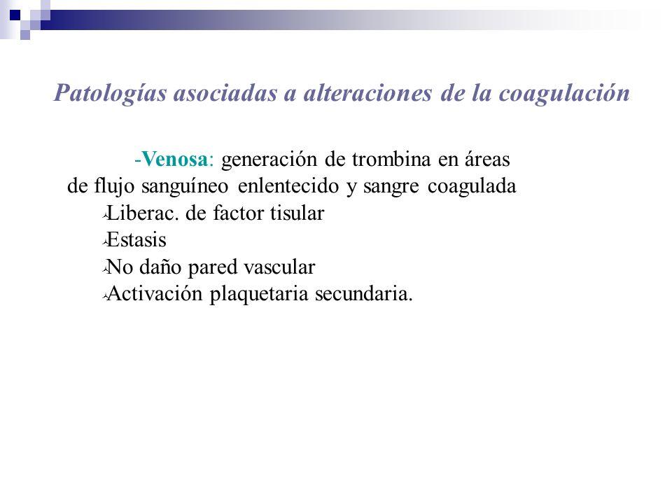 -Venosa: generación de trombina en áreas de flujo sanguíneo enlentecido y sangre coagulada Liberac. de factor tisular Estasis No daño pared vascular A