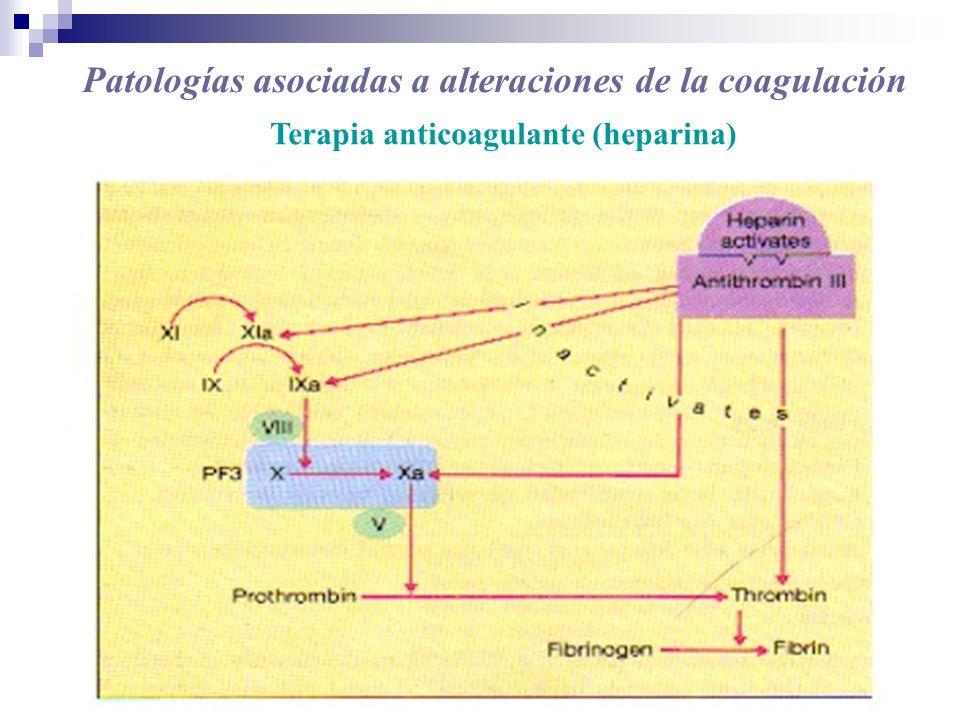 Terapia anticoagulante (heparina)
