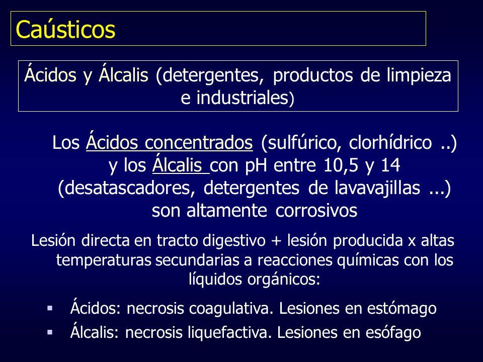 Caústicos Ácidos y Álcalis (detergentes, productos de limpieza e industriales ) Los Ácidos concentrados (sulfúrico, clorhídrico..) y los Álcalis con p