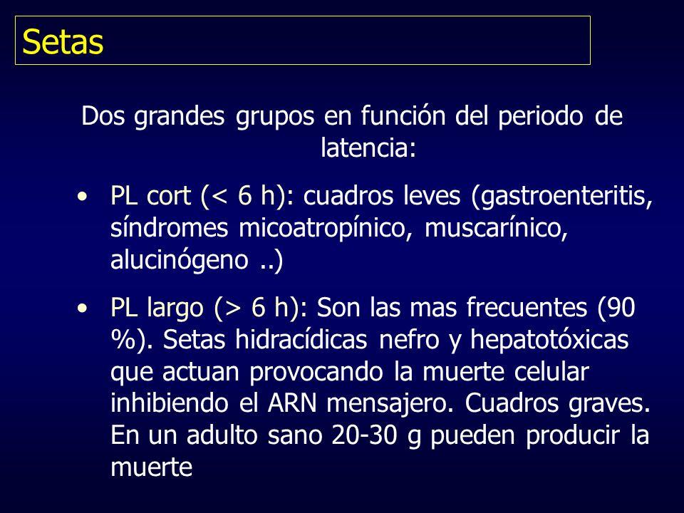 Setas Dos grandes grupos en función del periodo de latencia: PL cort (< 6 h): cuadros leves (gastroenteritis, síndromes micoatropínico, muscarínico, a