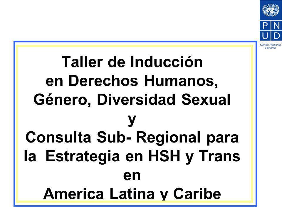 Taller de Inducción en Derechos Humanos, Género, Diversidad Sexual y Consulta Sub- Regional para la Estrategia en HSH y Trans en America Latina y Cari
