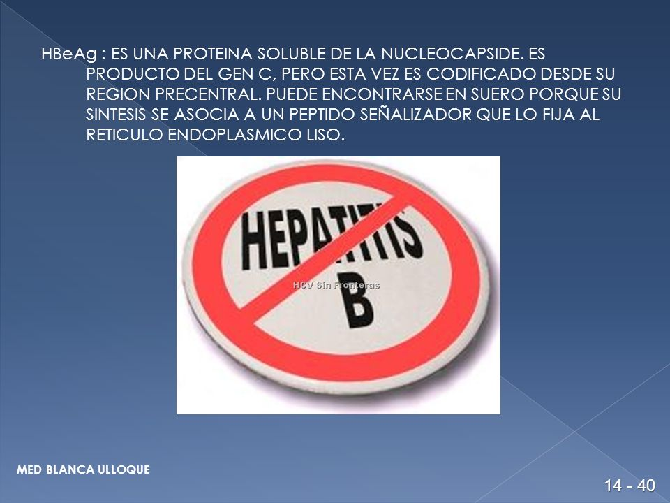 HBeAg : ES UNA PROTEINA SOLUBLE DE LA NUCLEOCAPSIDE.