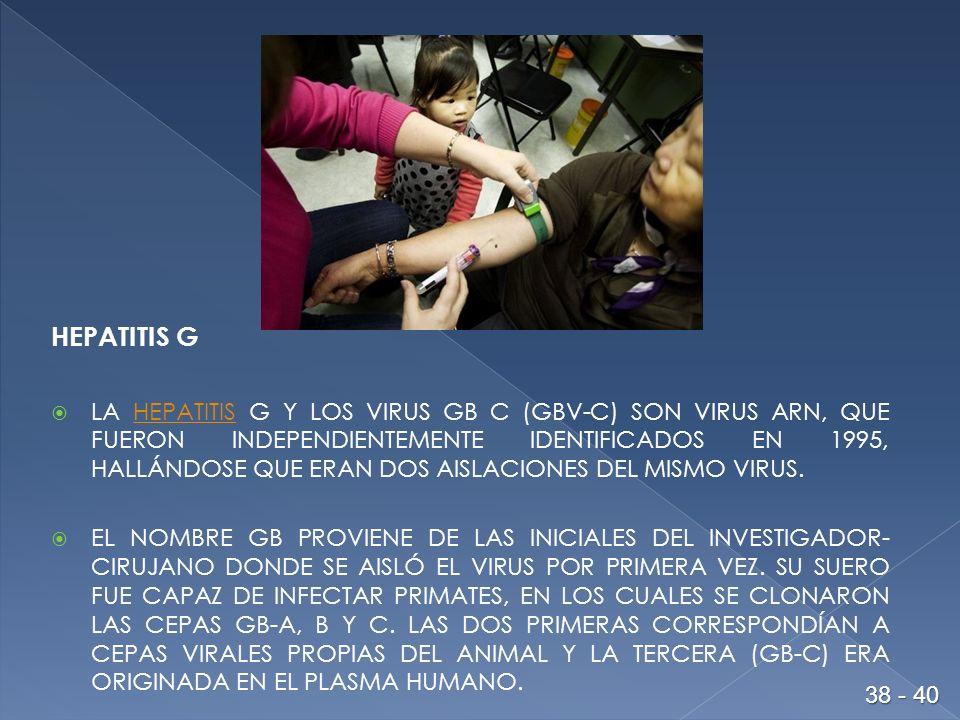 HEPATITIS G LA HEPATITIS G Y LOS VIRUS GB C (GBV-C) SON VIRUS ARN, QUE FUERON INDEPENDIENTEMENTE IDENTIFICADOS EN 1995, HALLÁNDOSE QUE ERAN DOS AISLACIONES DEL MISMO VIRUS.HEPATITIS EL NOMBRE GB PROVIENE DE LAS INICIALES DEL INVESTIGADOR- CIRUJANO DONDE SE AISLÓ EL VIRUS POR PRIMERA VEZ.
