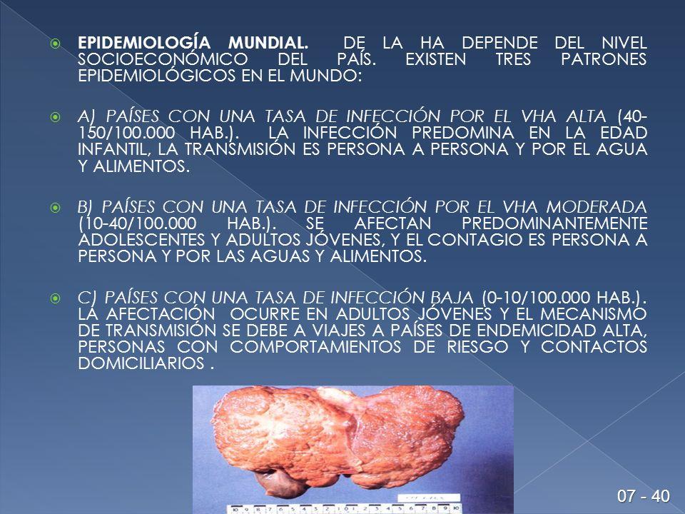 EPIDEMIOLOGÍA MUNDIAL.DE LA HA DEPENDE DEL NIVEL SOCIOECONÓMICO DEL PAÍS.