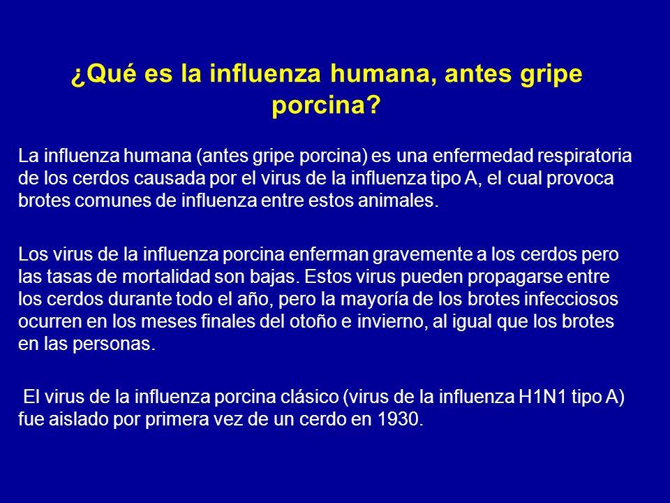 ¿Qué es la influenza humana, antes gripe porcina? La influenza humana (antes gripe porcina) es una enfermedad respiratoria de los cerdos causada por e