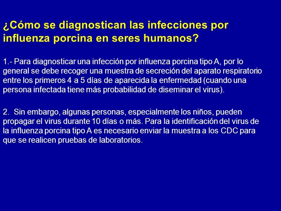 ¿Cómo se diagnostican las infecciones por influenza porcina en seres humanos? 1.- Para diagnosticar una infección por influenza porcina tipo A, por lo