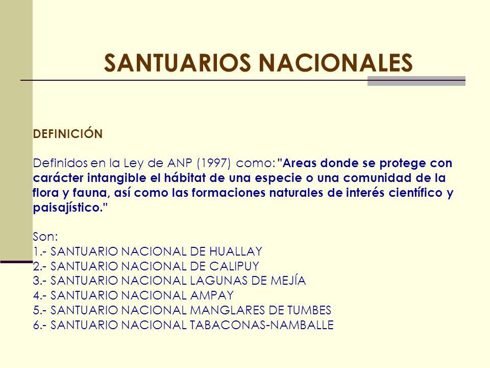 SANTUARIO NACIONAL HUAYLLAY SANTUARIO NACIONAL CALIPUY SANTUARIO NACIONAL TABACONAS NAMBALLE SANTUARIO NACIONAL MANGLARES DE TUMBES SANTUARIO NACIONAL AMPAY SANTUARIO NACIONAL LAGUNAS DE MEJÍA